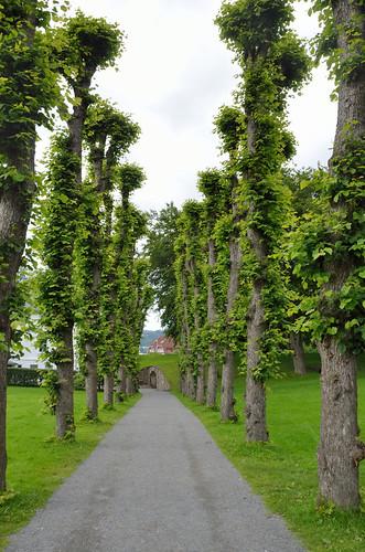 Nordnes Park