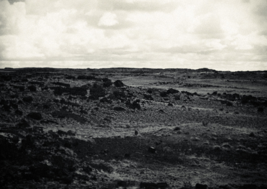 1990 Petrified Forest, Painted Desert