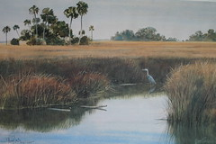 Heron in Sawgrass