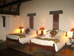 luxury eco lodge in the jungle belize