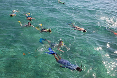 Resort Activities - Snorkeling