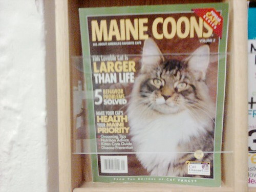 Why Do I Not Have A Subscription To This?!