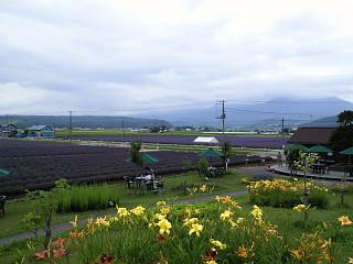 conv0024 by fujiphoto1