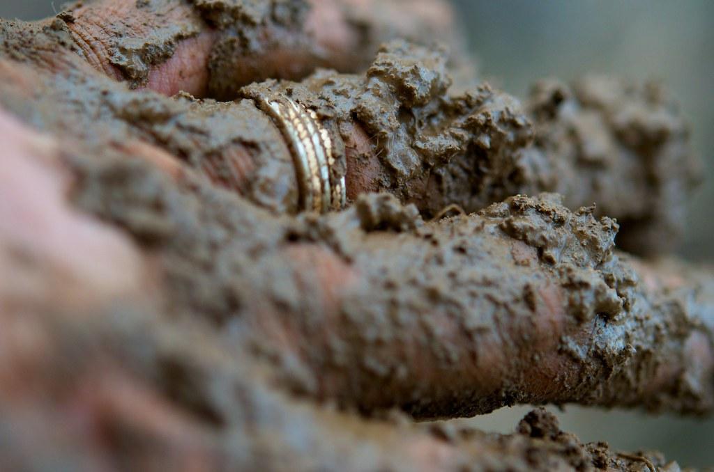 Bona Fide Farm Dirt