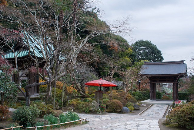 Kaizoji