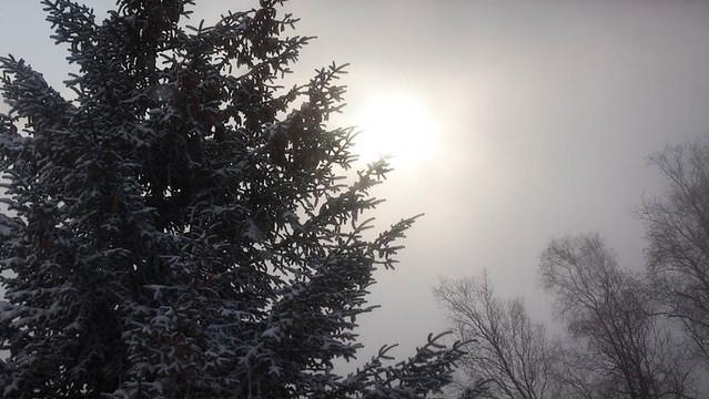 Christmas morning in Homer
