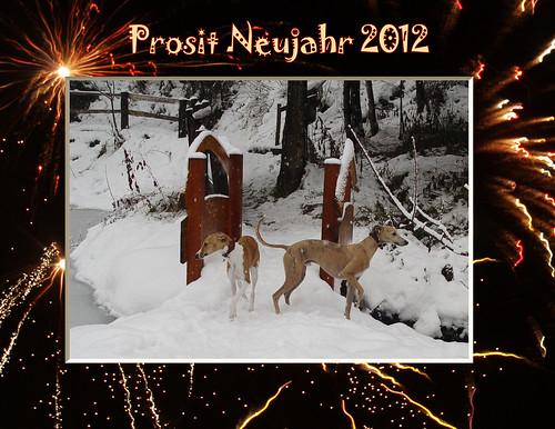 Neujahr2012 P1016483