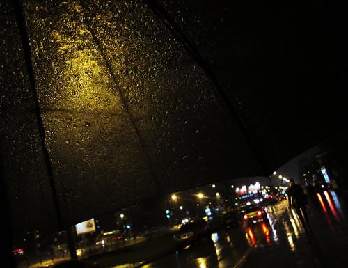 (348/365) Rain in December