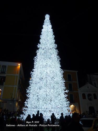 Salerno - Albero di Natale - Piazza Portanova