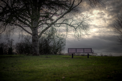 977/1000 - Park Bench by Mark Carline
