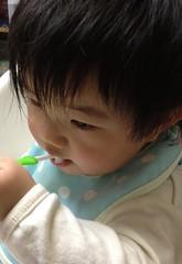 歯磨きとらちゃん(2012/1/6)