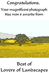 Best 8 awards