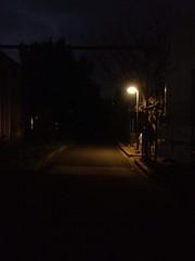 道と明かり