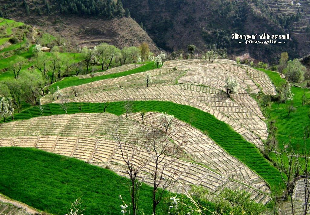 Swat Valley  (Pakistan)