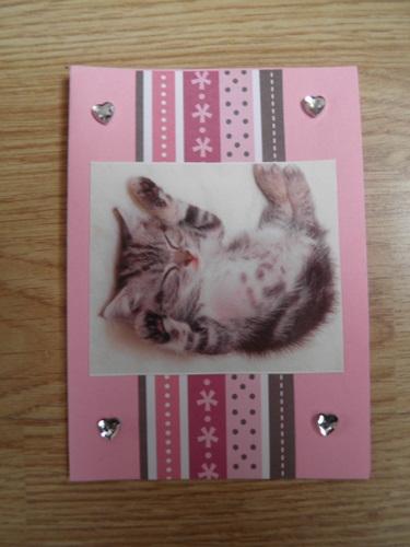 kaart kitten
