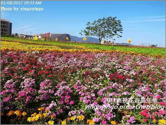 2011南投花卉嘉年華20120108_R0050251
