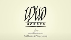 The Making of Wild Horses
