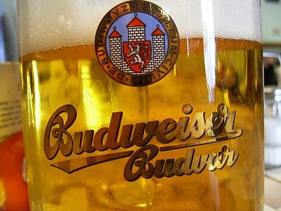 Budweiser Budvar in Glass