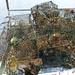 Derelict crab trap 3