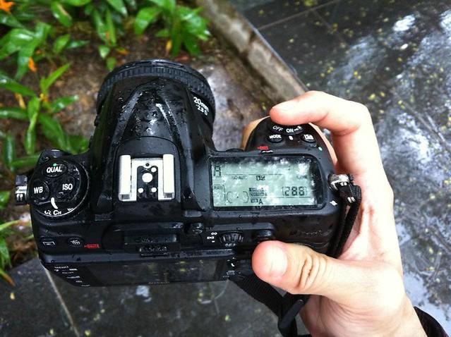D300 camera wet in the rain