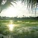 Kerala, foto: Daniel Linnert