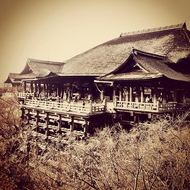 Bald winter at Kiyomizu Temple. 冬の清水寺は葉っぱや花がなく寂しいね。
