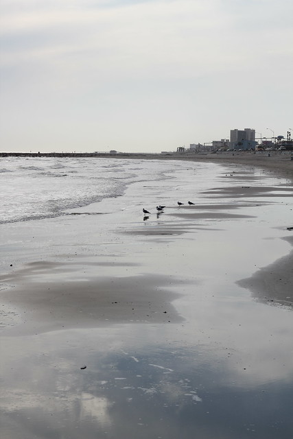 Galveston Island Beach