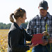Small photo of Agronomist & Farmer Inspecting Weeds