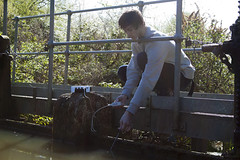 Student dipping SmartQ temperature sensor into pond 3100