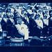 Cyanotype: Marching Band