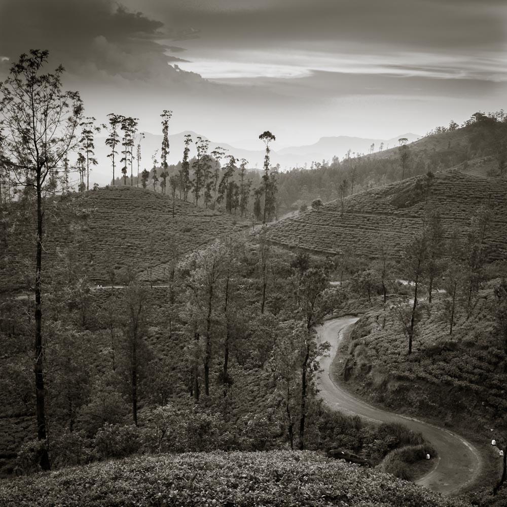 Sri Lanka n°21