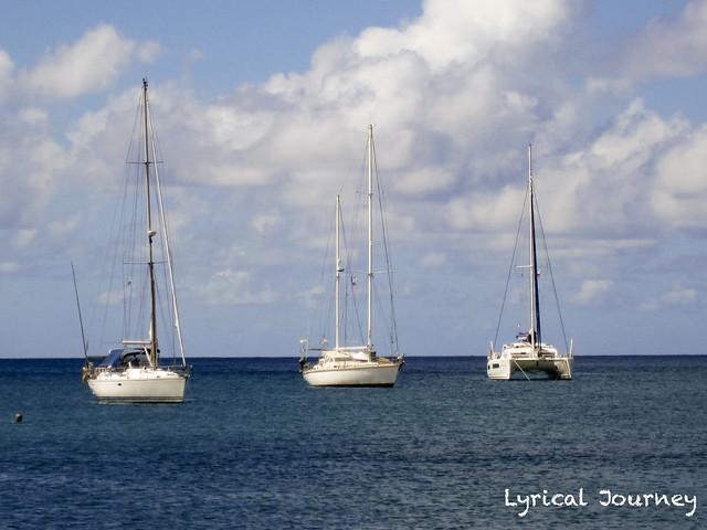 St Lucia 20111115_0183 WM