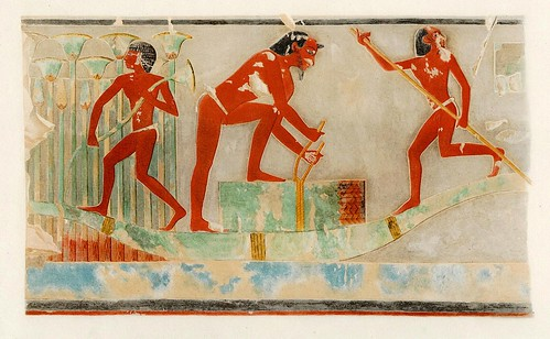 012-Barqueros recolectando papiros-The tomb of Puyemrê at Thebes  1922-1923- Norman de Garis Davies- © Universitätsbibliothek Heidelberg