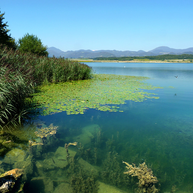 Velenje lake - Jewels of nature