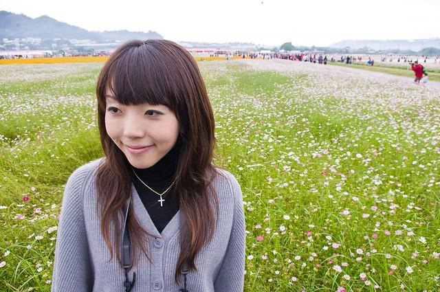 2011新社花海