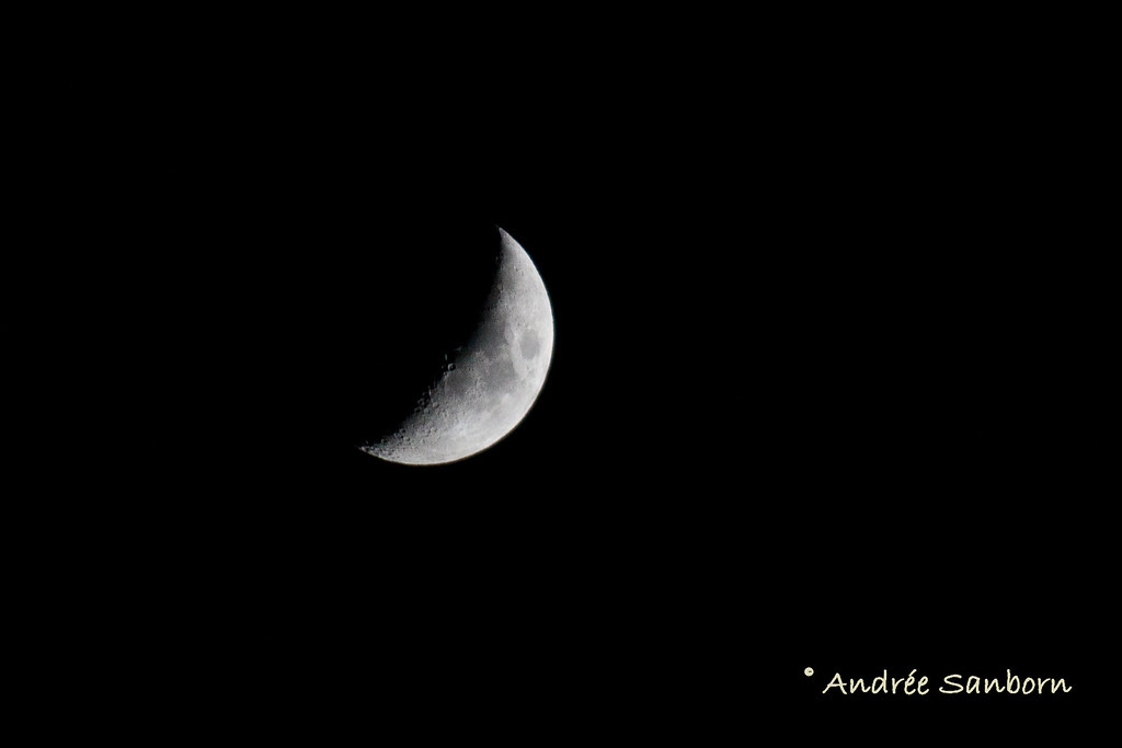 Waxing Crescent 26.6% of Full-5.jpg