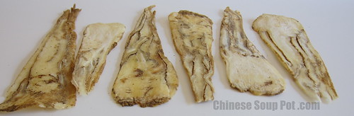 [photo - dong quai slices - radix angelica sinensis slices]
