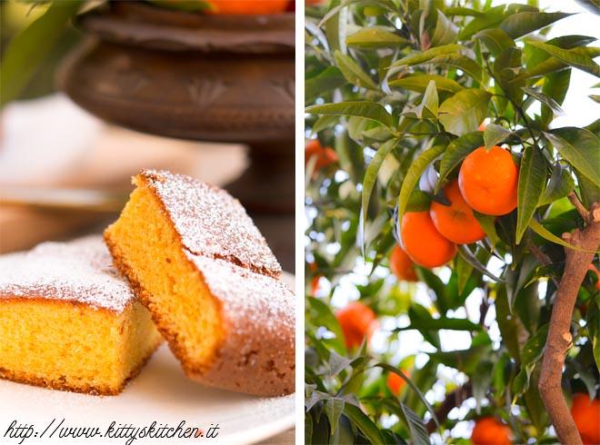 cake ai mandarini2