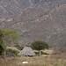 Thatched hut - Casa con techo de paja; en el camino de Yolotepec hacia el Río Colorado (Región Mixteca), Oaxaca, Mexico por Lon&Queta