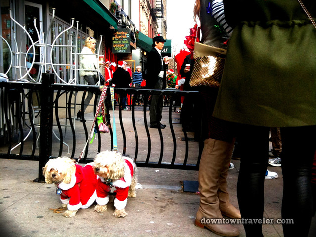 SantaCon NY 2011 East Village dogs