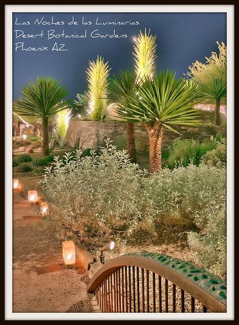 Las Noches De Las Luminarias Flickr Photo Sharing