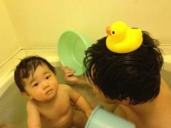 お風呂とらちゃん