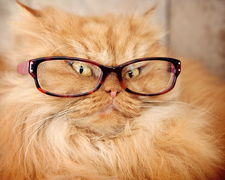 Prof.Dr.Garfi with Glasses