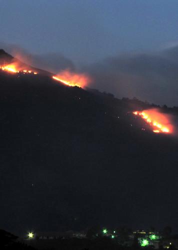 mountain forest landscape fire lights bush hill jamaica