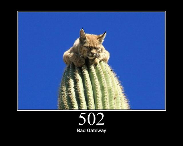 502 - Bad Gateway