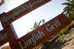 Lionfish Grill - Hatchet Caye
