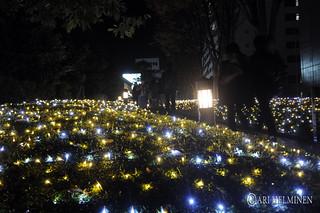 Shinjuku Christmas illuminations