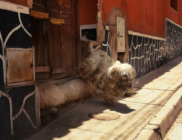 Боливия.Потоси. BOLI022