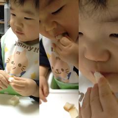 今日のパン食うとらちゃん(2011/12/25)