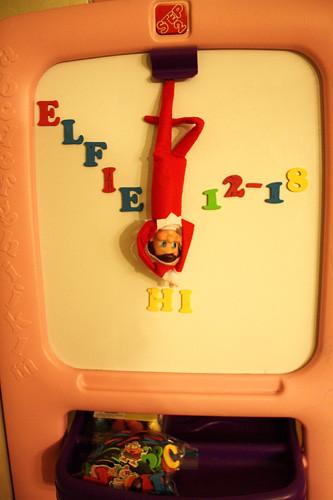Elfie-hanging-upside-down
